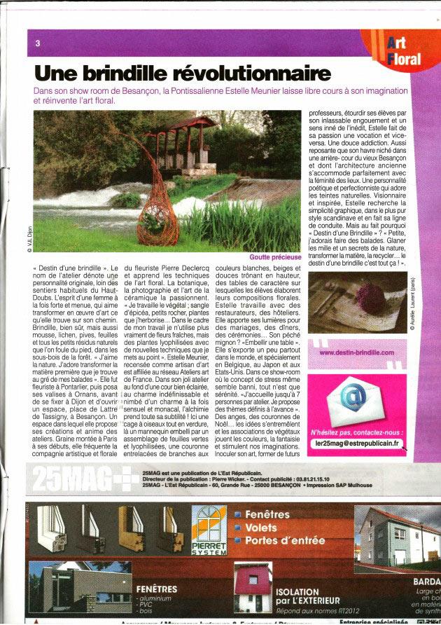 article-magasine-25-mag-destin-d'une-brindille-estelle-meunier