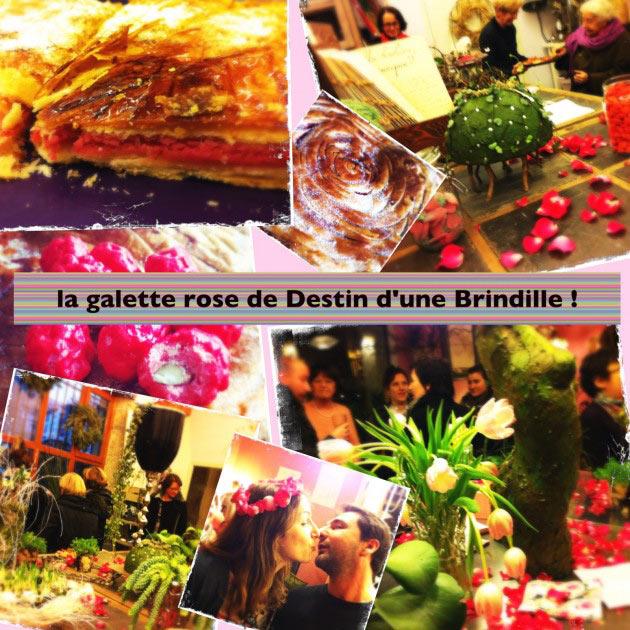 galette-de-rose-destiin-d'une-brindille-estelle-meunier