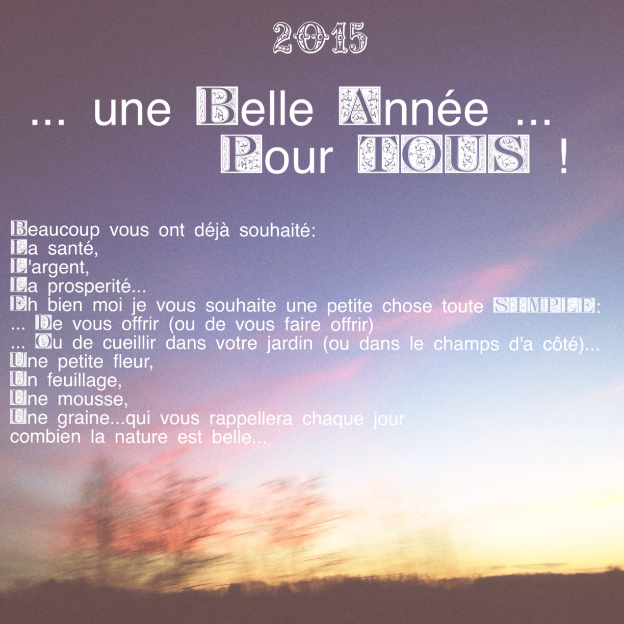 Voeux 2015…