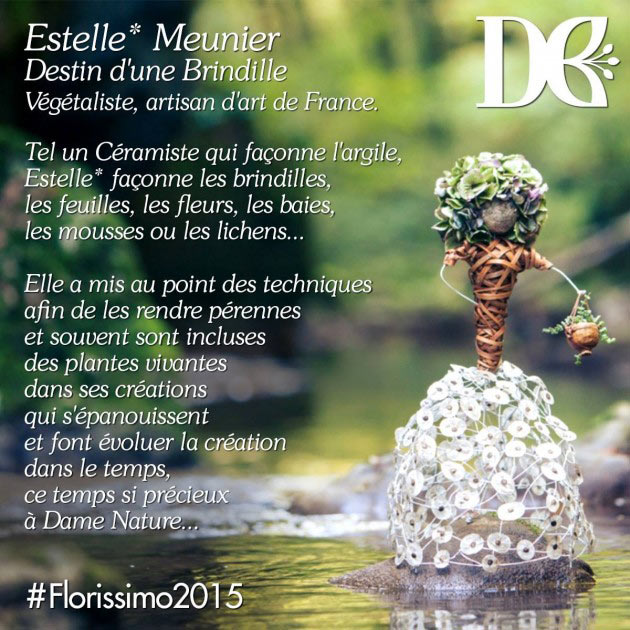 florissimo-2015-estelle-meunier-destin-d'une-brindille-description