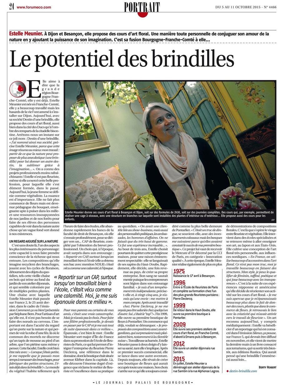 Article-dans-le-journal-palais-ducs-de-bourgogne-Le-PORTRAIT-avec-destin-d'une-brindille-et-estelle-Meunier